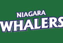 Bulls Edge Whalers in Niagara's Season Opener in GMHL Action