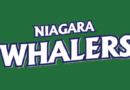 Whalers Calm the Hurricane in GMHL Action at the Vale